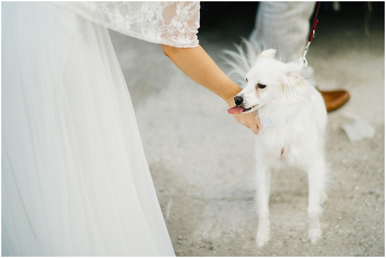Wedding By The Sea Greece 46